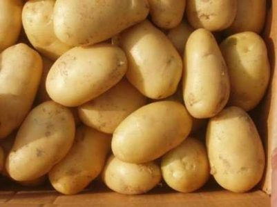 "HHS ""Potatoes"" Flyer"
