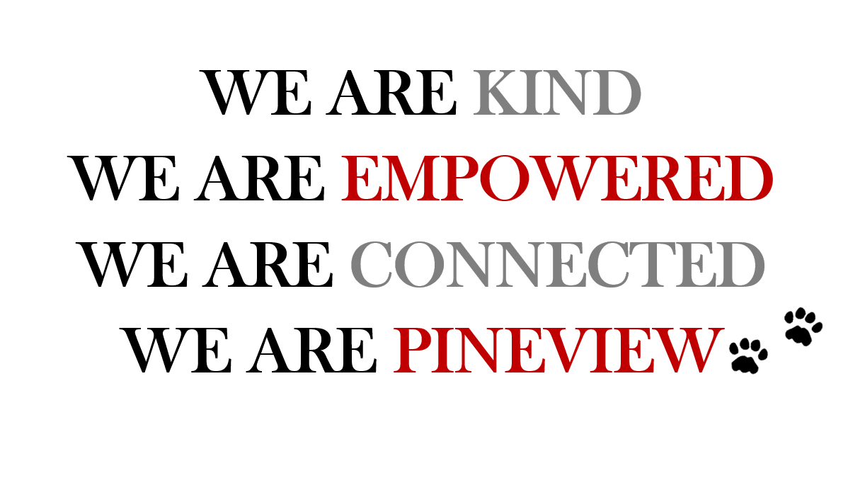 We are Kind, We are Empowered, We are Connected, We are Pine View